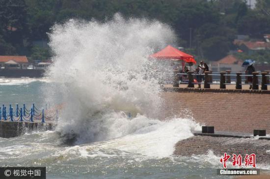 """8月2日,受台风""""海棠""""残余环流影响,山东省青岛市海边掀起10余米高大浪。市民和游客不顾危险,在海浪中拾海菜、观海景险象环生。王海滨 摄 图片来源:视觉中国"""