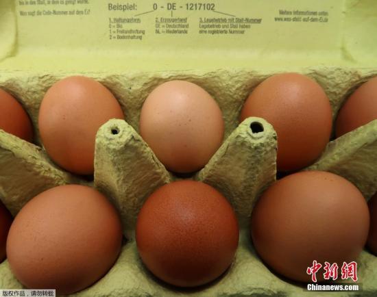 资料图片:鸡蛋。