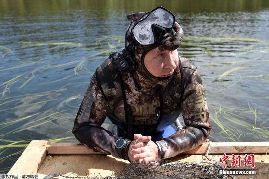 """佩斯科夫说,普京在前往布拉戈维申斯克的途中,于南西伯利亚稍作停留,""""普京在那儿进行了水下狩猎,持续两小时追赶一条狗鱼,却一直未能将其射伤。但最终还是有所收获""""。"""
