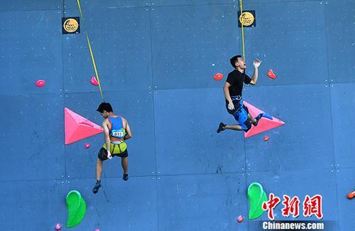 8月7日,第十三届全运会群众比赛攀岩决赛在重庆九龙坡区正式举行。来自全国各地的百余名运动员汇聚重庆参与角逐。图为参赛运动员正在进行攀岩比赛。 中新社记者 陈超 摄
