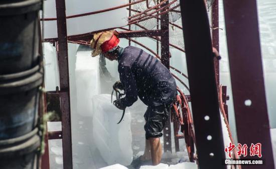 图为工人在船上装载冰块。 翟李强 摄