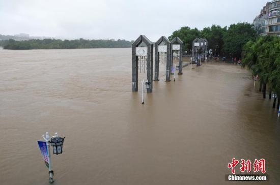 受新一轮连续强降雨影响,8月15日2时10分,漓江桂林水文站出现147.51米洪峰水位,超警戒水位1.51米,为今年最大洪水。当天漓江旅游船舶、排筏全线封航。 赵琳露 摄