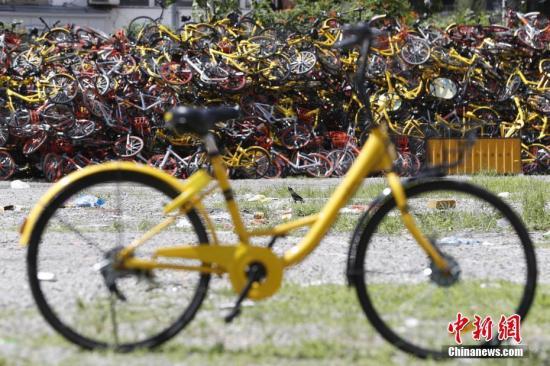 资料图:共享单车。 张亨伟 摄