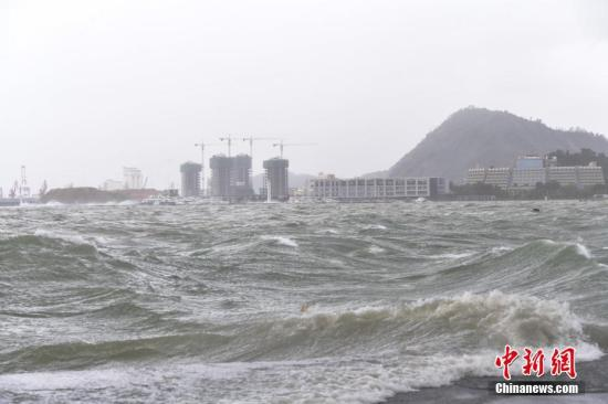 """8月23日,台风""""天鸽""""登陆广东,深圳迎来狂风暴雨,当地气象台发布台风红色预警信号。深圳市区内不少树木被大风折断或刮倒,行人出行艰难。 记者 陈文 摄"""