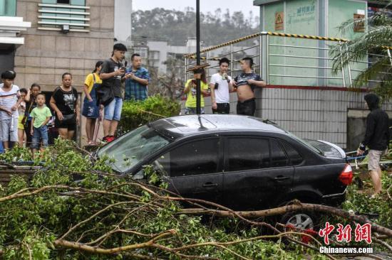 """8月23日,一辆轿车被埋在倒伏的大树下。当日,第13号台风""""天鸽""""登陆后的珠海市区一片狼藉,市区内多处道路被倒伏的大树阻断,沿海路段遭遇海水倒灌。 中新社记者 陈骥�F 摄"""