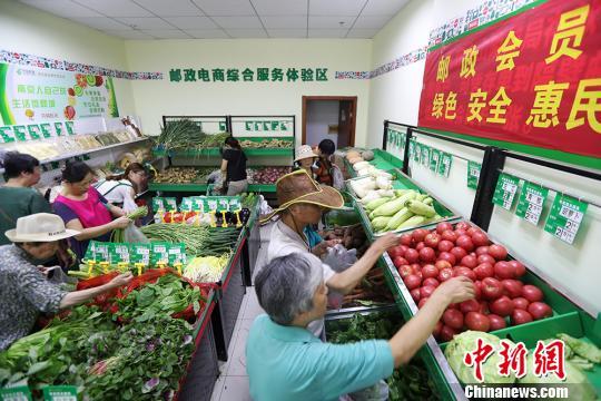 制度发力稳菜价 中秋、国庆一些品种价格会不会走高?