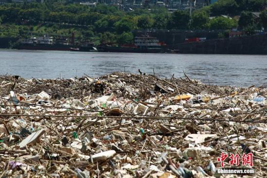 资料图:受长江上游强降雨影响,长江重庆段江面上出现大量垃圾。 周毅 摄