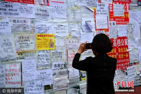 资料图:济南一市民查看租房信息。 图片来源:视觉中国