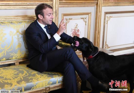 摆脱悲伤国度形象 马克龙效应让法国人乐观?