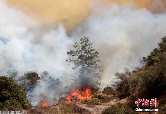 当地时间9月3日,美国加州金枪鱼大峡谷的山火持续。