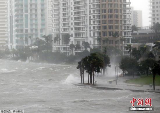 """当地时间9月10日,飓风""""艾尔玛""""抵达美国佛罗里达州沿海地区。根据美国国家飓风中心公布的最新消息,""""艾尔玛""""再度升级为4级飓风。佛州州长里克・斯科特说,佛州共有630万人收到撤离令,其中70万人收到强制撤离令。这一人数占该州总人口四分之一,已成为美国史上最大规模的应急撤离。斯科特说,""""艾尔玛""""将带来龙卷风、暴雨和风暴洪潮,降雨量预计达到38厘米,西南沿海的海浪最高可达4.5米。"""