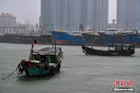 资料图:台风来袭,渔船回港避风。 <a target='_blank' href='http://www.chinanews.com/'>中新社</a>记者 骆云飞 摄