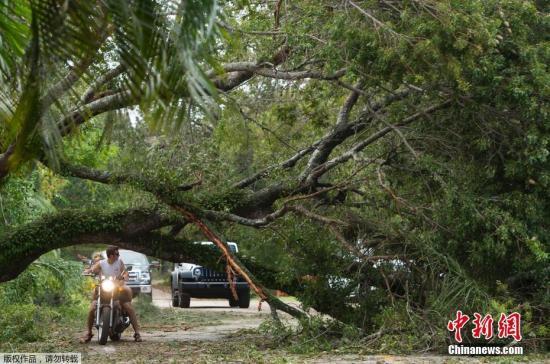 """资料图:飓风""""艾尔玛""""肆虐美国佛罗里达州。"""