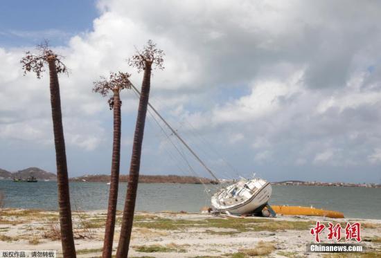 荷属圣马丁岛,树木只剩下枝干。