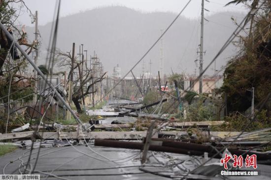 """受飓风""""玛利亚""""侵袭,波多黎各电线杆和树木被吹倒,街道上一片狼藉。"""