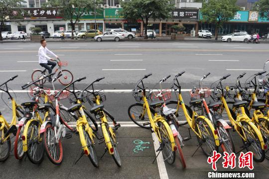 年轻人从一排共享单车前骑行经过。 张浪 摄