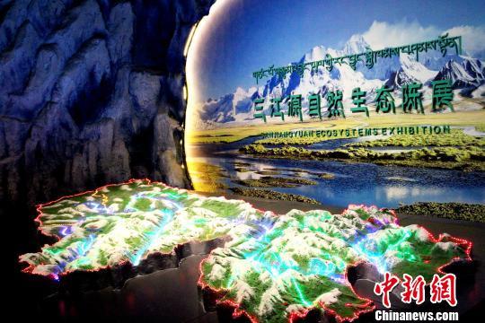 图为青海玉树州博物馆的三江源自然生态陈展。 张添福 摄