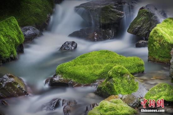 """国家公园体制试点评估验收在即 钱江源、神农架国家公园交出怎样的""""答卷""""?"""