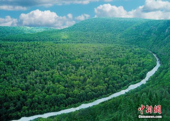 资料图:东北虎国家级自然保护区风光,该区位于东北虎豹国家公园黑龙江省片区内。王兴林 摄
