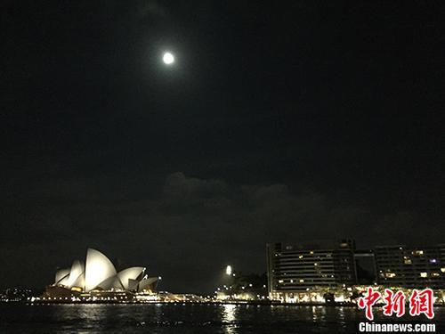 资料图为悉尼。中新社记者 陶社兰 摄
