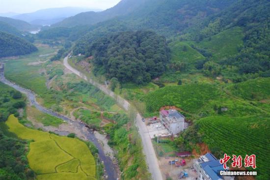 资料图:江南乡村景象。 王剑 摄