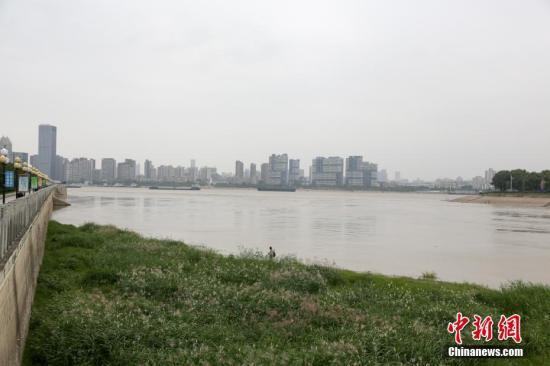 10月10日,汉江武汉龙王庙水域,江水几乎与江滩地面持平。连日来,受丹江口水库调度和汉江流域上游降雨影响,汉江武汉段水位迅速上涨。记者 张畅 摄