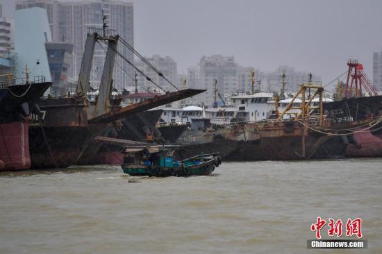 资料图:台风来袭,海口新港码头一艘渔船正在回港避风。中新社记者 骆云飞 摄