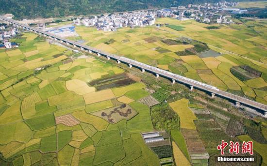 """2017年中国环境日的主题是:""""绿水青山就是金山银山"""",旨在动员引导社会各界保护自然环境,践行循环发展,共同建设美丽中国。五年来,生态文明建设受到前所未有的重视,绿色发展和绿色生活成为大势所趋。""""草木植成,国之富也。""""当生态优势转变为经济优势,当美丽风景带来崭新动能,""""生态红利""""、""""生态反哺""""效应愈加显著。图为2016年10月4日,一列动车行驶在贵广高铁贵州省榕江县郊外田野高架桥上。从空中俯瞰,色彩斑斓的稻田,犹如秋天绘制的""""调色板""""。中新社记者 贺俊怡 摄"""