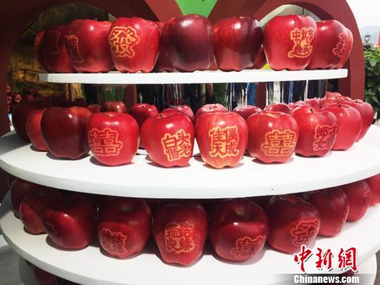 资料图:苹果。 徐雪 摄