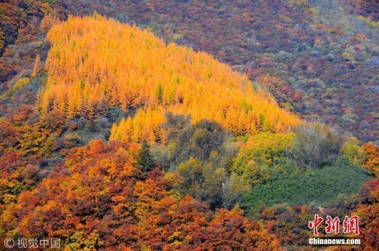 资料图:自然保护区。 图片来源:视觉中国