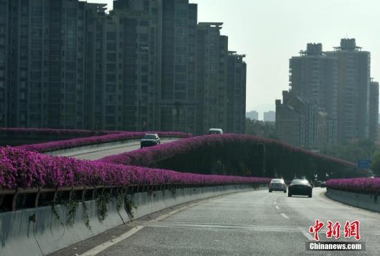 资料图:福州街头。吕明 摄