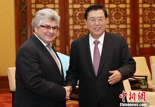 10月31日,全国人大常委会委员长张德江在北京人民大会堂会见瑞士联邦议会联邦院议长比绍夫贝尔格。中新社记者 宋吉河 摄