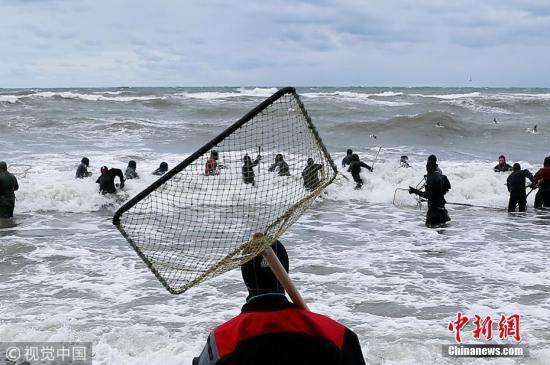 """2017年11月3日,俄罗斯加里宁格勒州,当地兴起""""琥珀热"""",大批民众在波罗的海海边收集琥珀。 图片来源:视觉中国"""