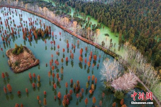 <b>国家发改委:长江流域水质优良断面比例提升至96.3%</b>