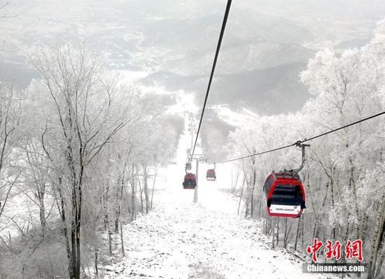 在新一轮冷空气影响下,吉林省各地降温明显。11日上午,一夜降雪过后,位于吉林省吉林市境内的一家滑雪场内出现了大面积雾凇美景,山上山下一片银装素裹,好似童话世界。。金乔 摄
