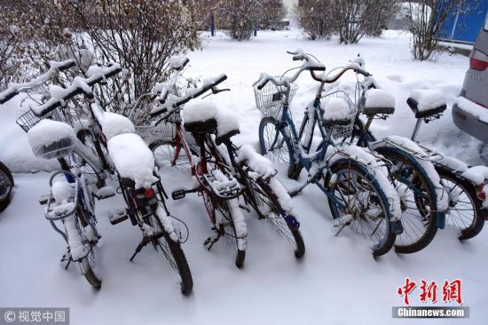 11月14日,内蒙古呼伦贝尔市牙克石康乐小区,一排自行车上落满积雪。余昌军 摄 图片来源:视觉中国
