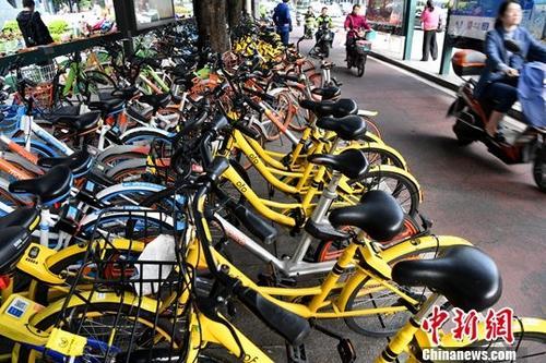共享单车遇到十字路口 如何发展考验城市管理