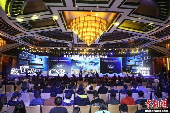 """资料图:2017年""""第十三届中国・企业社会责任国际论坛""""。中新社记者 韩海丹 摄"""