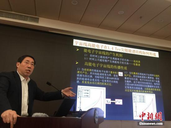 中国科学院院士吴岳良在做评议。记者 张素 摄
