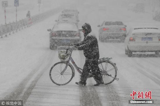 """12月11日,山东烟台,市民在冒雪推车步行。当日,受较强冷空气影响,山东省烟台市遭遇暴雪袭击, 气温骤降, 路人成""""雪人。当地气象台暴雪蓝色预警信号,继续发布道路结冰黄色预警。 凤尾竹 摄 图片来源:视觉中国"""