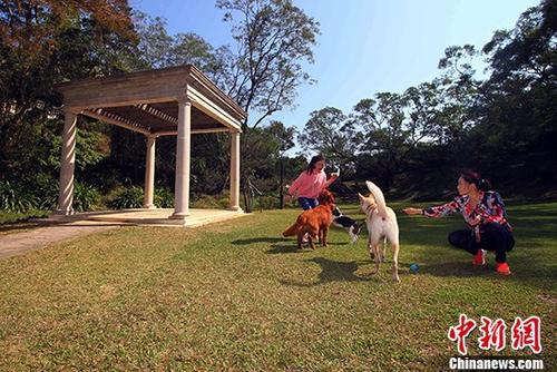材料图?港承平赡山顶公园。a target='_blank' href='http://www.chinanews.com/'种孤社/a记者 李志华 摄