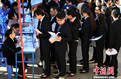 资料图:毕业生求职。<a target='_blank' href='http://www.chinanews.com/'>中新社</a>记者 李进红 摄