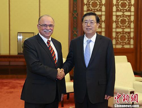 12月18日,中国全国人大常委会委员长张德江在北京人民大会堂会见了欧洲议会副议长帕帕迪莫里斯。中新社记者 刘震 摄