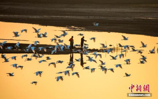 资料图:鄱阳湖。 傅建斌 摄