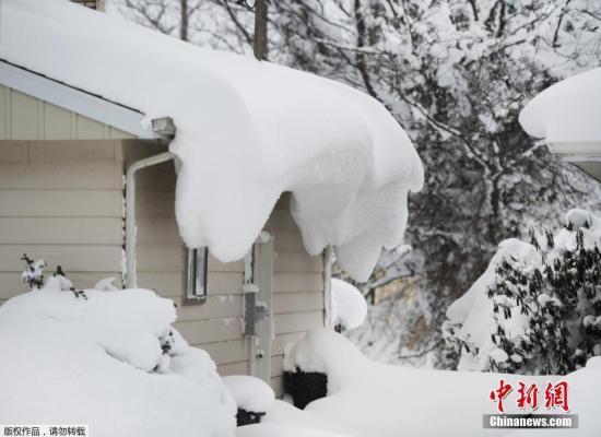"""资料图:大雪袭击美国宾州,雪后房屋变成""""奶油蛋糕""""。"""