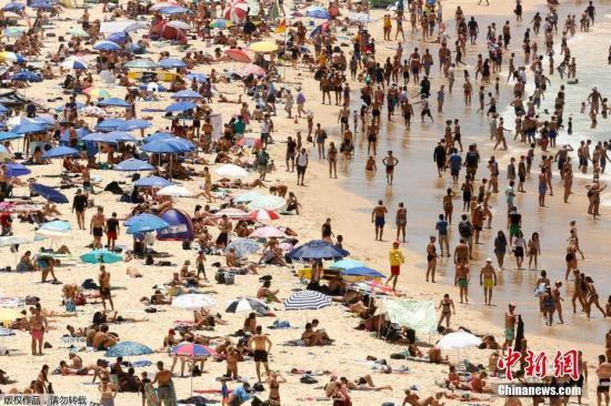 资料图:悉尼海滩上晒太阳的人群。