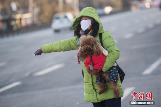 """1月8日,山西太原,宠物狗穿""""冬装""""御寒。据中央气象台消息,受较强冷空气影响,中国中东部迎来大风降温天气,地面最低温度0℃线将南压至江南南部。 <a target='_blank' href='http://www.chinanews.com/'>中新社</a>记者 武俊杰 摄"""