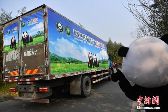 图为民众欢送两只大熊猫从都江堰启程。 张浪 摄