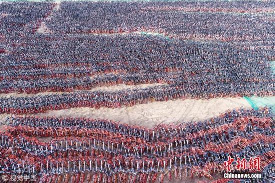 2018年1月17日,在宁夏银川福州南街一大片空地上,看到密密麻麻有数千辆共享单车停放在这里,周围有铁丝网围着,还有工作人员不断把车拉进来,停放在此地。 作者:七道阳光 图片来源:视觉中国