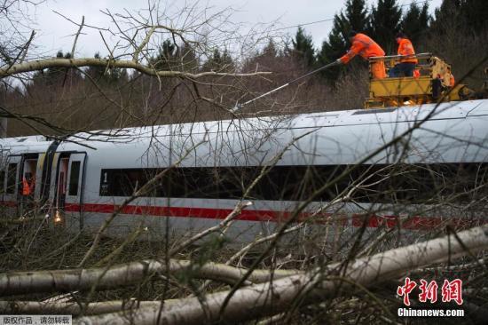 """资料图:德国全境遭飓风""""弗里德里克""""袭击,大树被飓风折断影响德铁列车运行。"""